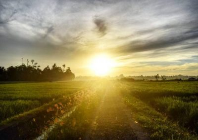 Sunrise at surrounding ricefields